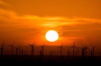 Sun Over Windmills